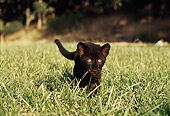 LEP 30 RK0213 11