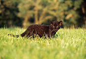 LEP 30 RK0216 04