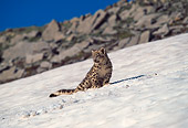 LEP 40 RW0001 01