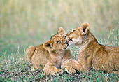 LNS 01 GL0002 01