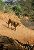 LNS 01 DB0013 01
