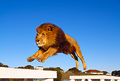 LNS 01 RK0270 17