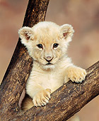 LNS 02 RK0002 02