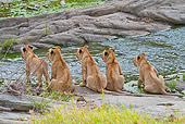 LNS 02 RW0009 01
