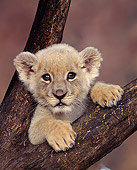 LNS 02 RK0002 04