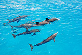 MAM 03 JM0104 01