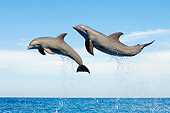 MAM 03 JM0053 01