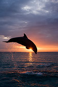 MAM 03 KH0005 01