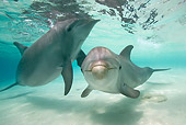 MAM 03 KH0016 01