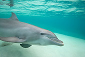 MAM 03 KH0024 01