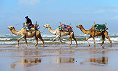 MAM 04 AC0003 01