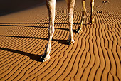 MAM 04 MH0001 01
