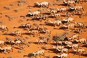 MAM 04 MH0008 01