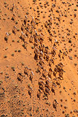 MAM 04 MH0009 01