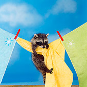 MAM 08 RS0010 01