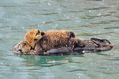MAM 09 TL0053 01