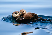 MAM 09 LS0001 01