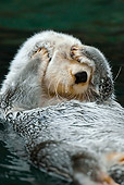 MAM 09 TL0030 01