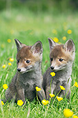 MAM 12 GL0002 01