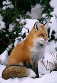 MAM 12 TL0002 01