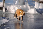 MAM 12 TL0005 01