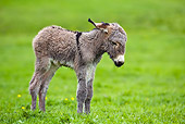 MAM 14 KH0076 01