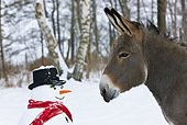 MAM 14 KH0084 01