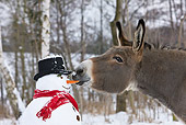 MAM 14 KH0085 01