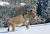 MAM 14 KH0089 01