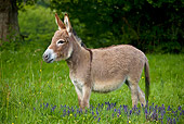 MAM 14 KH0103 01