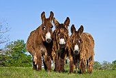 MAM 14 KH0105 01