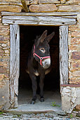 MAM 14 KH0128 01