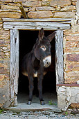 MAM 14 KH0129 01
