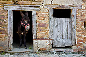 MAM 14 KH0130 01