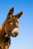MAM 14 KH0140 01