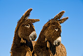 MAM 14 KH0143 01