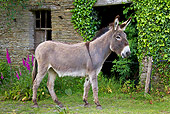 MAM 14 KH0254 01