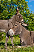 MAM 14 KH0257 01