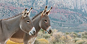 MAM 14 KH0302 01