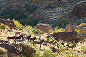 MAM 14 KH0328 01