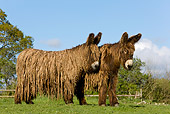 MAM 14 KH0006 01