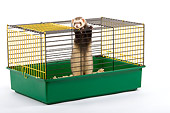 MAM 15 JE0001 01