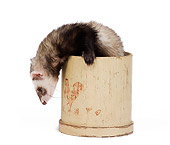 MAM 15 JE0010 01