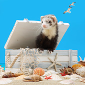 MAM 15 XA0004 01