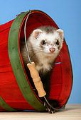MAM 15 KH0002 01