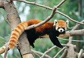 MAM 20 RK0002 02