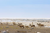 MAM 25 SK0003 01