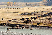 MAM 26 MC0009 01