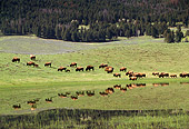 MAM 26 TK0002 01