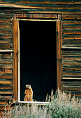 MAM 29 TL0013 01